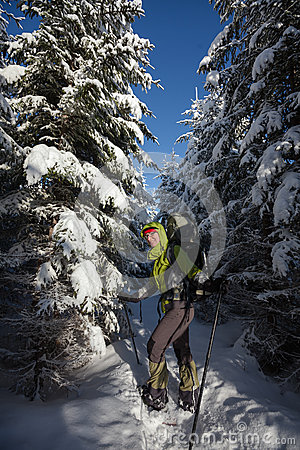 Woman snowshoeing in winter Carpathian mountains