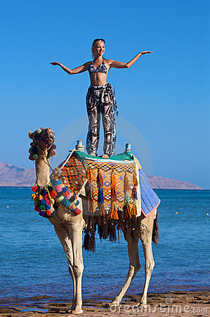 Free Woman Standing On A Camel On A Ocean Background Stock Photography - 5134032