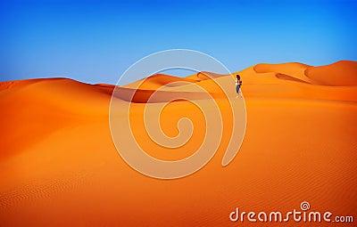Woman traveler in desert