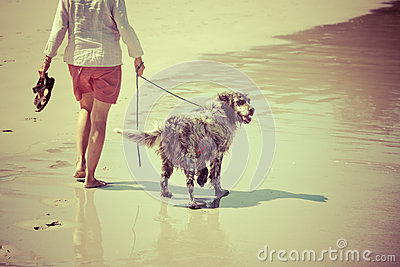 Woman walks the dog at the beach