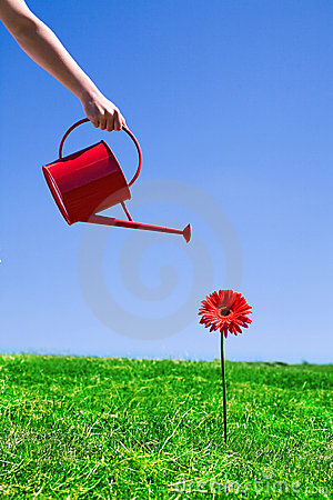 Free Woman Watering Flower Royalty Free Stock Image - 9721836