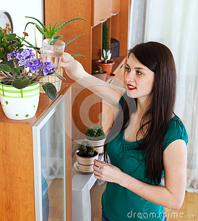 Woman watering  flowers in home