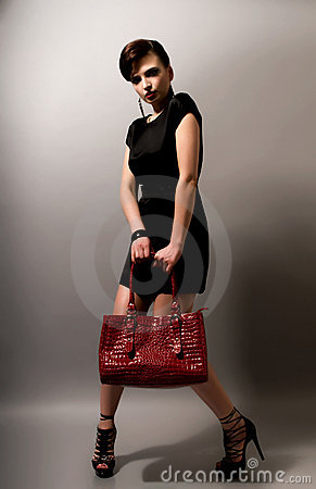 Free Woman With Handbag Royalty Free Stock Photography - 14980457