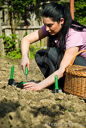 Free Woman Working In Garden And Using Tools Royalty Free Stock Images - 14273079
