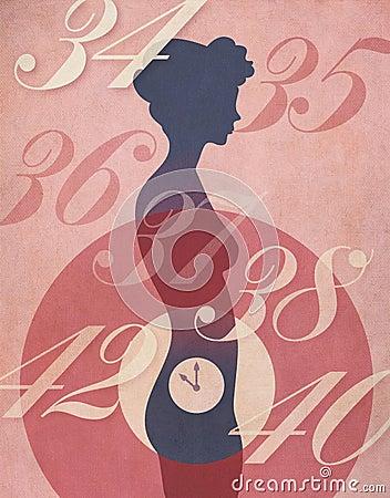 Womans Biological Clock Illustration