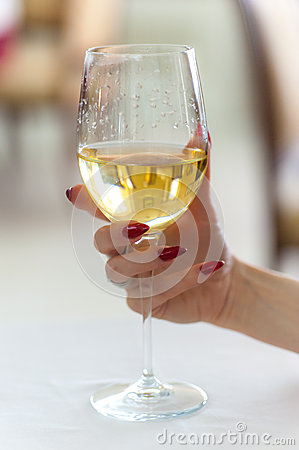 womans hand holding wine glass stock photo image 39641539