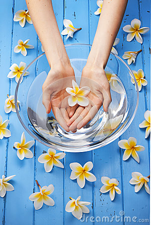 Spa Flowers Water Hands Treatment