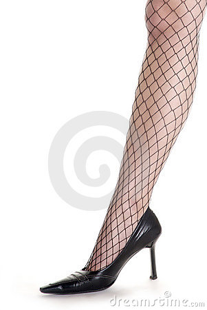 Womans leg and net stocking