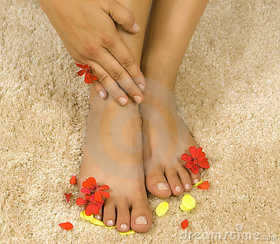 Womans legs with petals