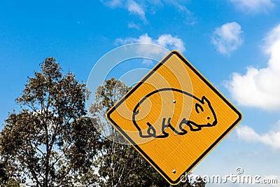 Wombat traffic sign
