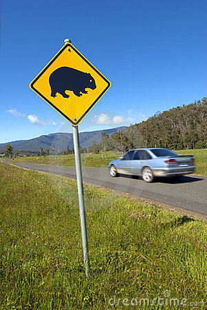 Wombats crossing sign and speeding car.