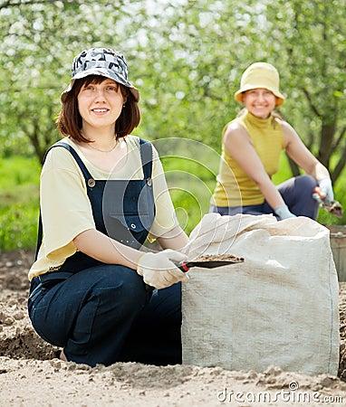 Women fertilizes  soil