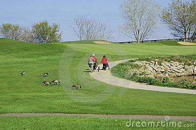 Women Golfing 2