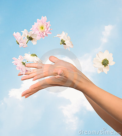 Free Women Hands And Flowers Stock Photography - 9783122