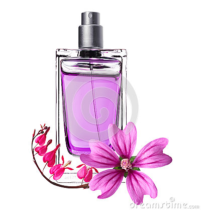 Women perfume in beautiful bottle and pink flowers