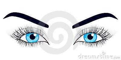 Women s eyes. Vector illustration.