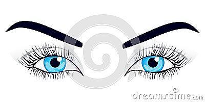 Women s eyes. Vector illustration.