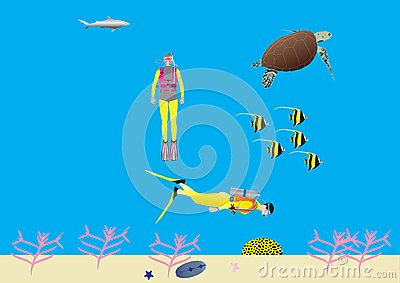 Women Scuba Divers on a Coral Reef