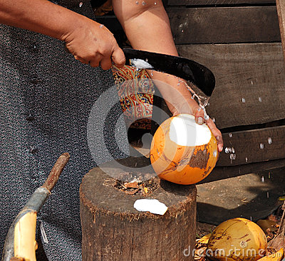 Free Women Selling Fruits Of Coconut Tree Stock Photos - 29974603