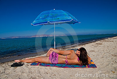 Black umbrella Stock Illustration Images. 708 black umbrella