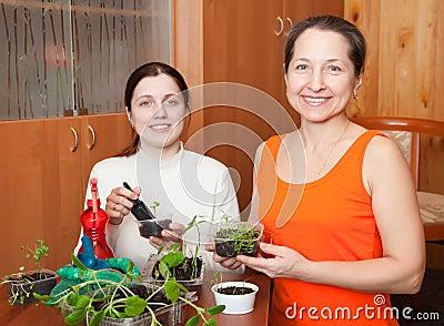 Women with various seedlings