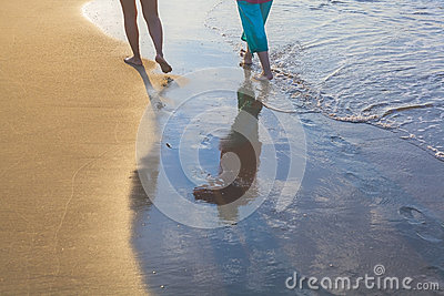 Women walking on beach during sunshine