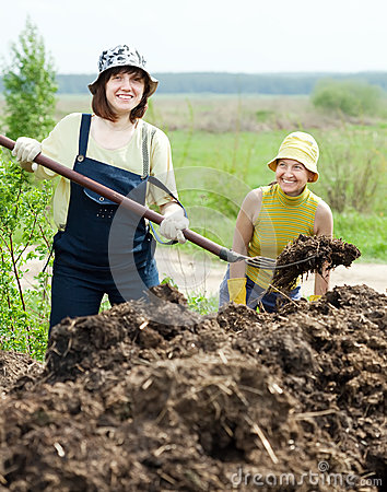 Free Women Works With Animal Manure Royalty Free Stock Images - 24870429