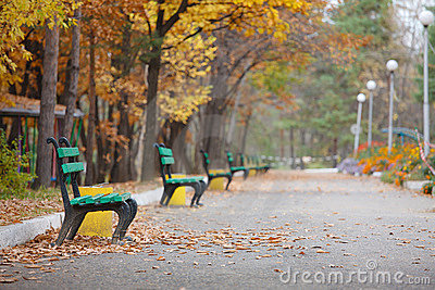 Wonderful bench in the autumn park