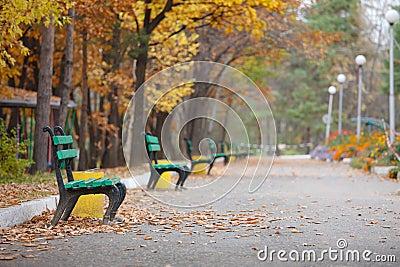 Wonderful bench in the autumn park