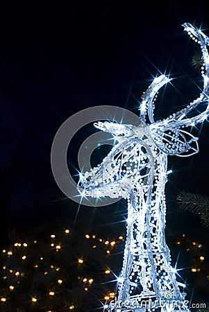 Wonderful Christmas reindeer