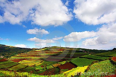 Wonderful hill