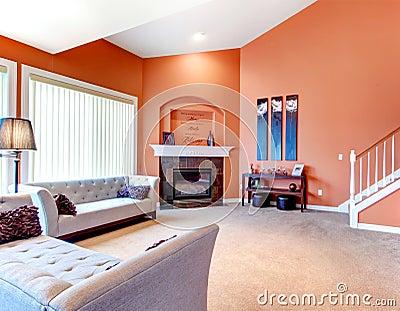 wonderful orange grey living room ideas | Wonderful Orange Living Room With Grey Classic Sofa, Dark ...