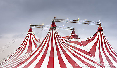 The wonderful spectacle of the circus
