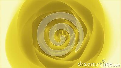 Eternal Yellow Rose // 4k 60fps Artistic Poetic Floral Video Background Loop stock footage