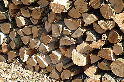 Wood Stock Image - Image: 19103601