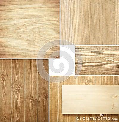 Free Wood Stock Photo - 20392810