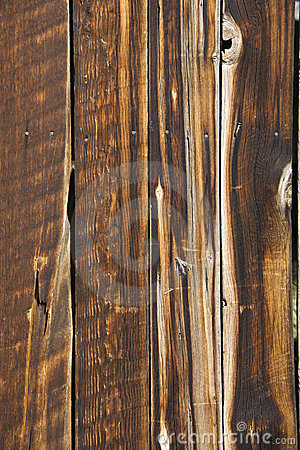Free Wood. Royalty Free Stock Photos - 2847118