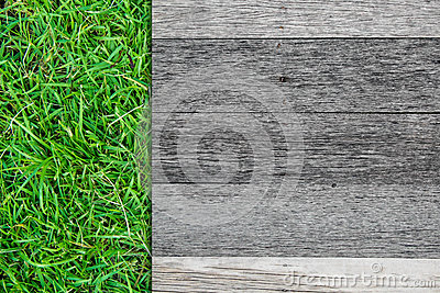Wood board on green grass