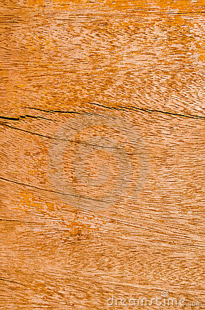 The wood board or texture