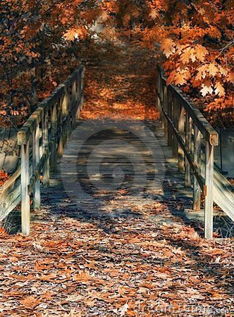 Wood bridge in autumn colors and dreamy atmosphere