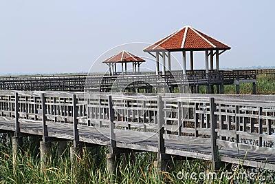 Wood bridge and pavilion