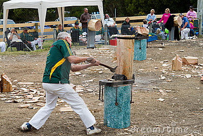 Wood chopping event Editorial Stock Image