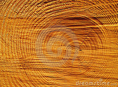 Wood circles detail