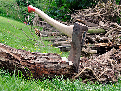 Wood Cutting - Axe Stuck in a Tree Log on Grass