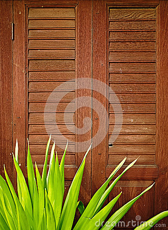 Wood door retro style