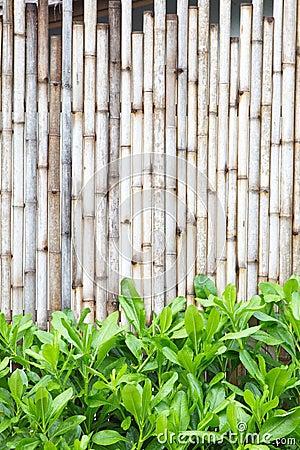 Free Wood Fence Royalty Free Stock Photo - 78445395