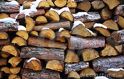 Wood for fire