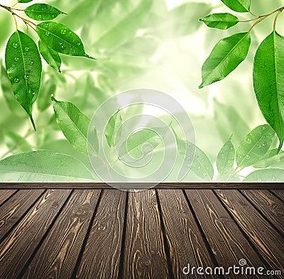 Wood floor with green bokeh .