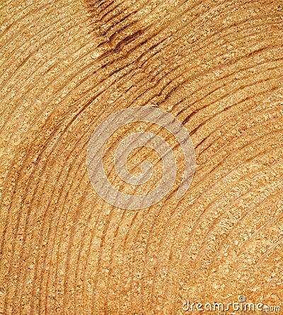 Free Wood Grain Stock Images - 20563494