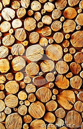 Free Wood Log Backround Stock Images - 5551754